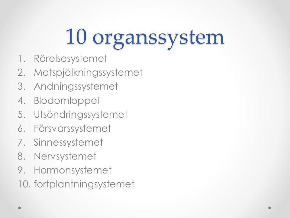 10 organssystem 1.Rörelsesystemet 2.Matspjälkningssystemet 3.Andningssystemet 4.Blodomloppet 5.Utsöndringssystemet 6.Försvarssystemet 7.Sinnessystemet