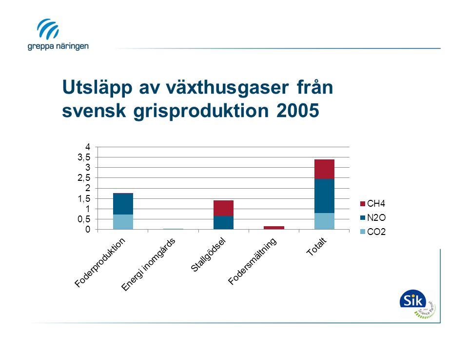 Utsläpp av växthusgaser från svensk grisproduktion 2005