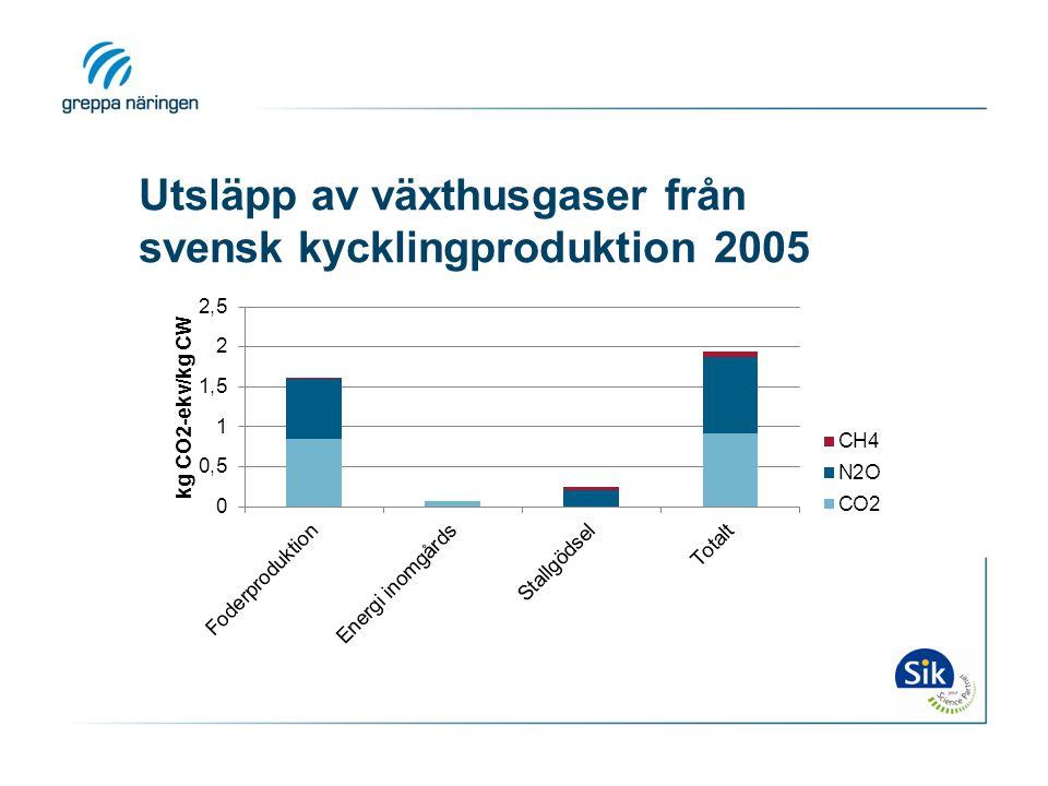 Utsläpp av växthusgaser från svensk kycklingproduktion 2005