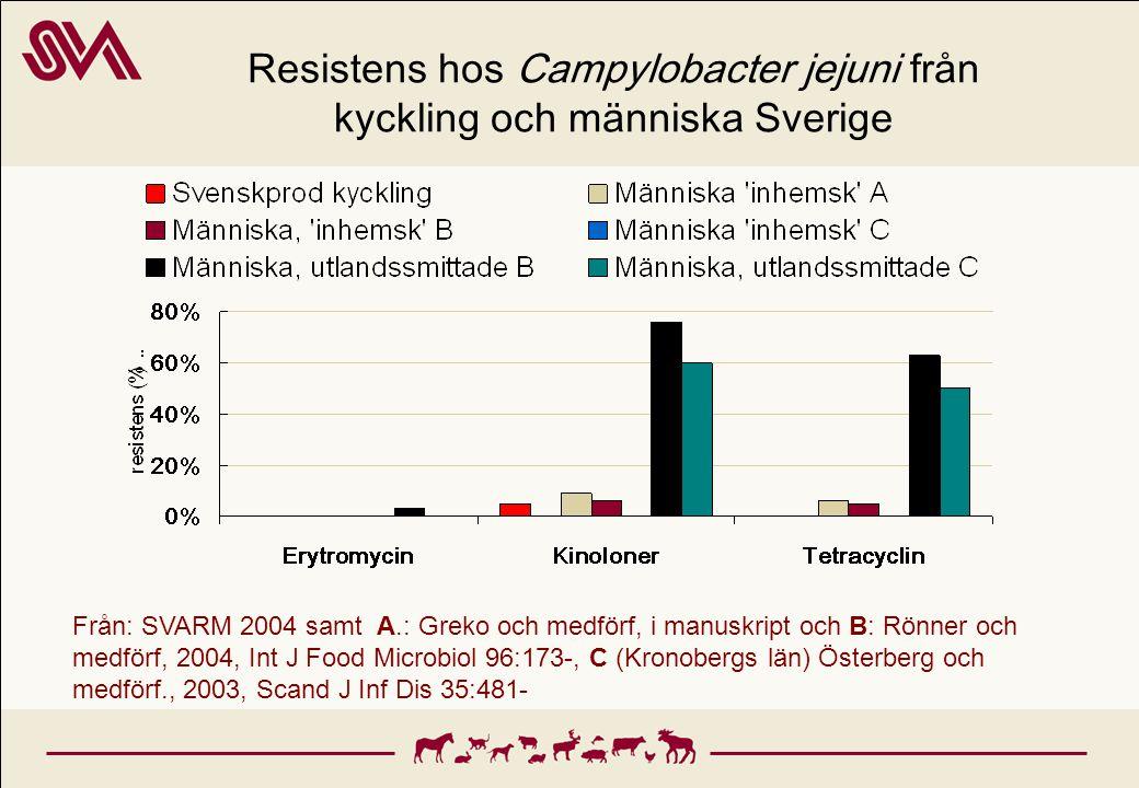 Resistens hos Campylobacter jejuni från kyckling och människa Sverige Från: SVARM 2004 samt A.: Greko och medförf, i manuskript och B: Rönner och medf