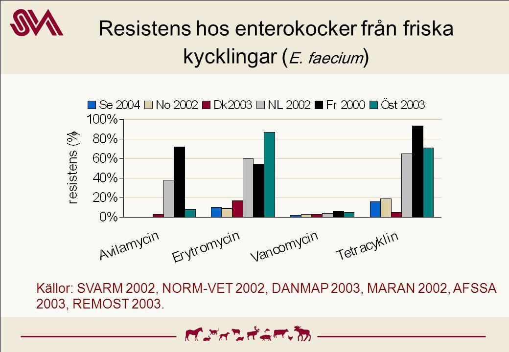 Resistens hos enterokocker från friska kycklingar ( E. faecium ) Källor: SVARM 2002, NORM-VET 2002, DANMAP 2003, MARAN 2002, AFSSA 2003, REMOST 2003.