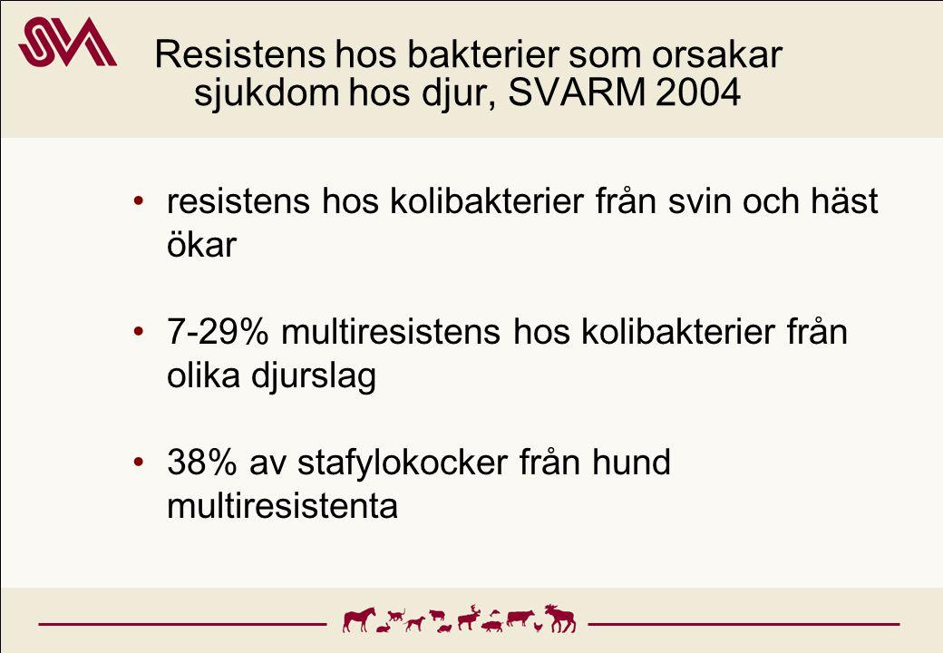Resistens hos bakterier som orsakar sjukdom hos djur, SVARM 2004 resistens hos kolibakterier från svin och häst ökar 7-29% multiresistens hos kolibakt