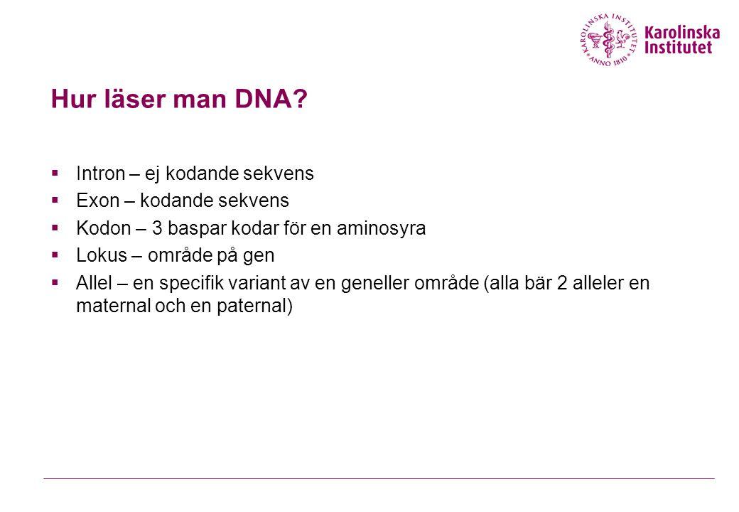 Hur läser man DNA.
