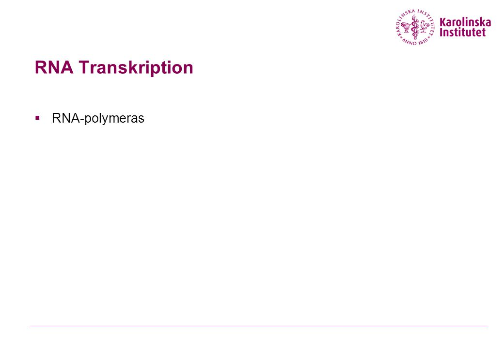 RNA Transkription  RNA-polymeras