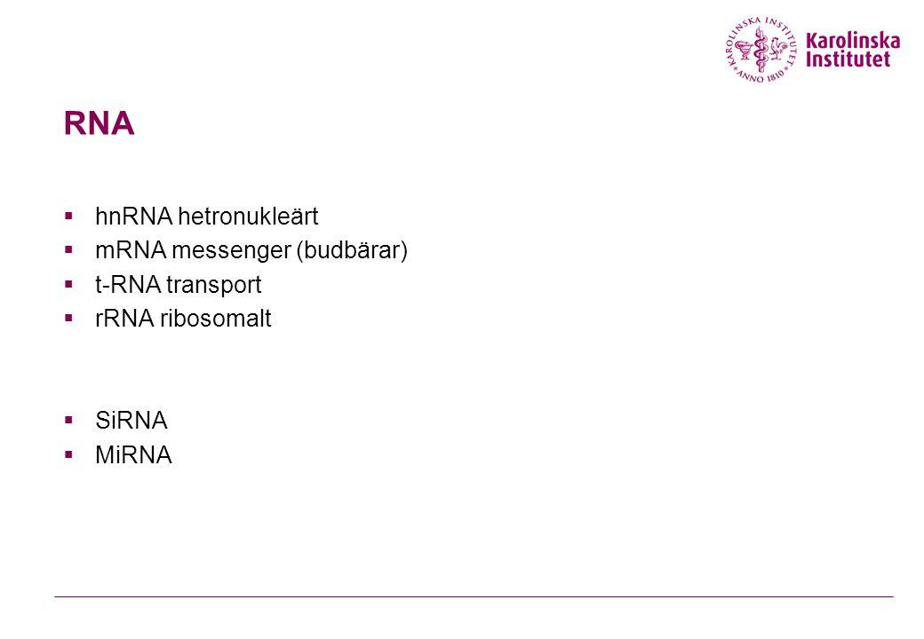 RNA  hnRNA hetronukleärt  mRNA messenger (budbärar)  t-RNA transport  rRNA ribosomalt  SiRNA  MiRNA