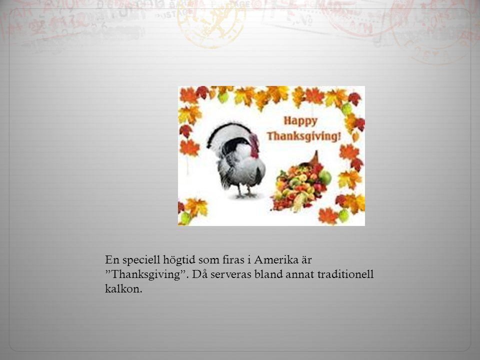 En speciell högtid som firas i Amerika är Thanksgiving .