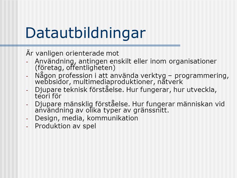 Datautbildningar Är vanligen orienterade mot - Användning, antingen enskilt eller inom organisationer (företag, offentligheten) - Någon profession i a