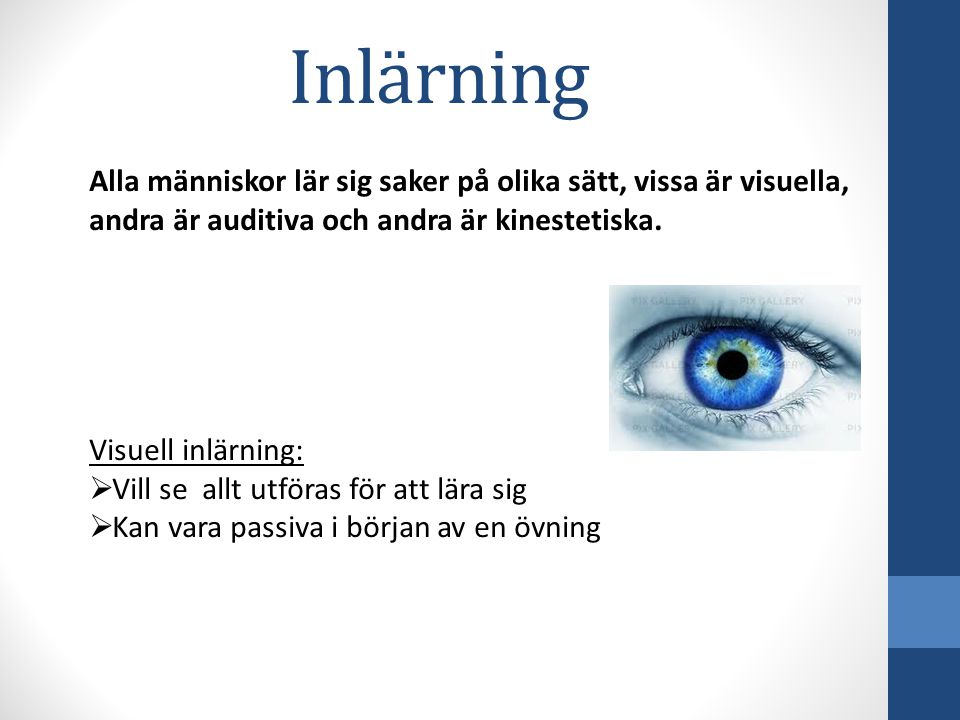 Alla människor lär sig saker på olika sätt, vissa är visuella, andra är auditiva och andra är kinestetiska.