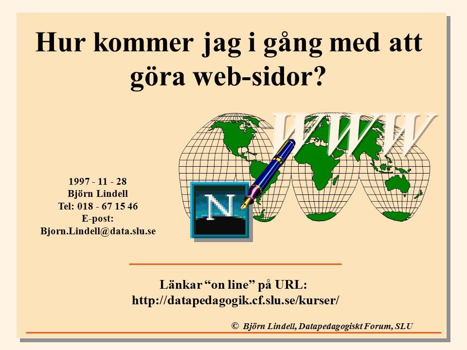 © Björn Lindell, Datapedagogiskt Forum, SLU Hur kommer jag i gång med att göra web-sidor.