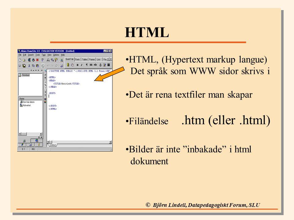 © Björn Lindell, Datapedagogiskt Forum, SLU HTML HTML, (Hypertext markup langue) Det språk som WWW sidor skrivs i Det är rena textfiler man skapar Filändelse.htm (eller.html) Bilder är inte inbakade i html dokument