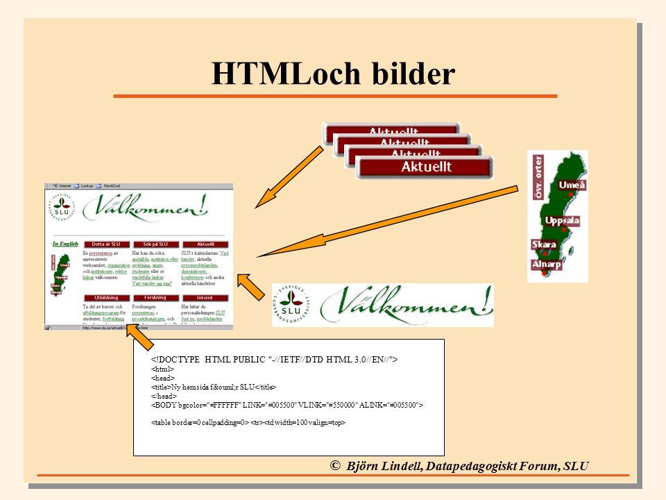© Björn Lindell, Datapedagogiskt Forum, SLU HTMLoch bilder Ny hemsida för SLU
