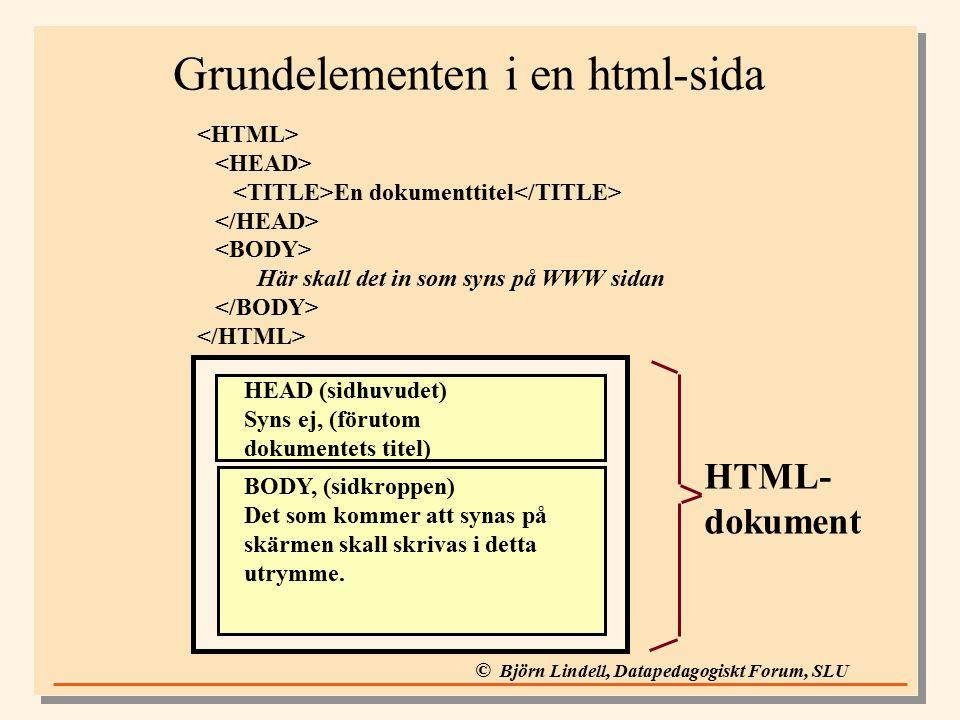 © Björn Lindell, Datapedagogiskt Forum, SLU Grundelementen i en html-sida En dokumenttitel Här skall det in som syns på WWW sidan HEAD (sidhuvudet) Syns ej, (förutom dokumentets titel) BODY, (sidkroppen) Det som kommer att synas på skärmen skall skrivas i detta utrymme.