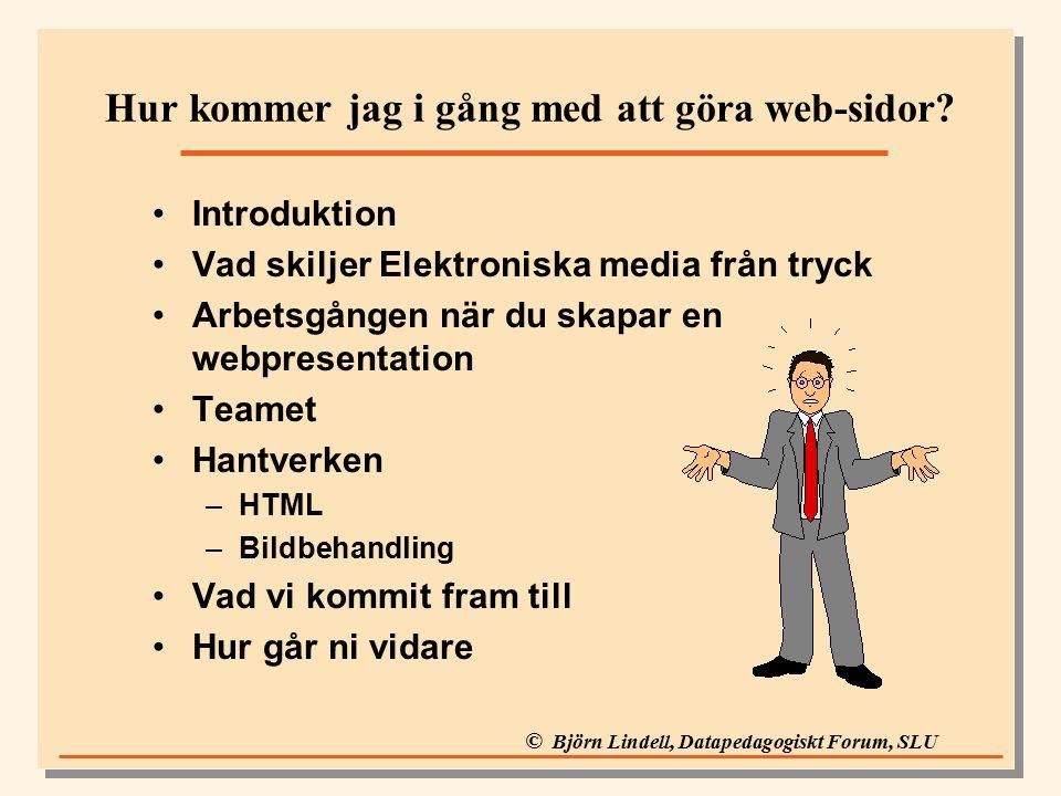 © Björn Lindell, Datapedagogiskt Forum, SLU Introduktion Vad skiljer Elektroniska media från tryck Arbetsgången när du skapar en webpresentation Teamet Hantverken –HTML –Bildbehandling Vad vi kommit fram till Hur går ni vidare Hur kommer jag i gång med att göra web-sidor