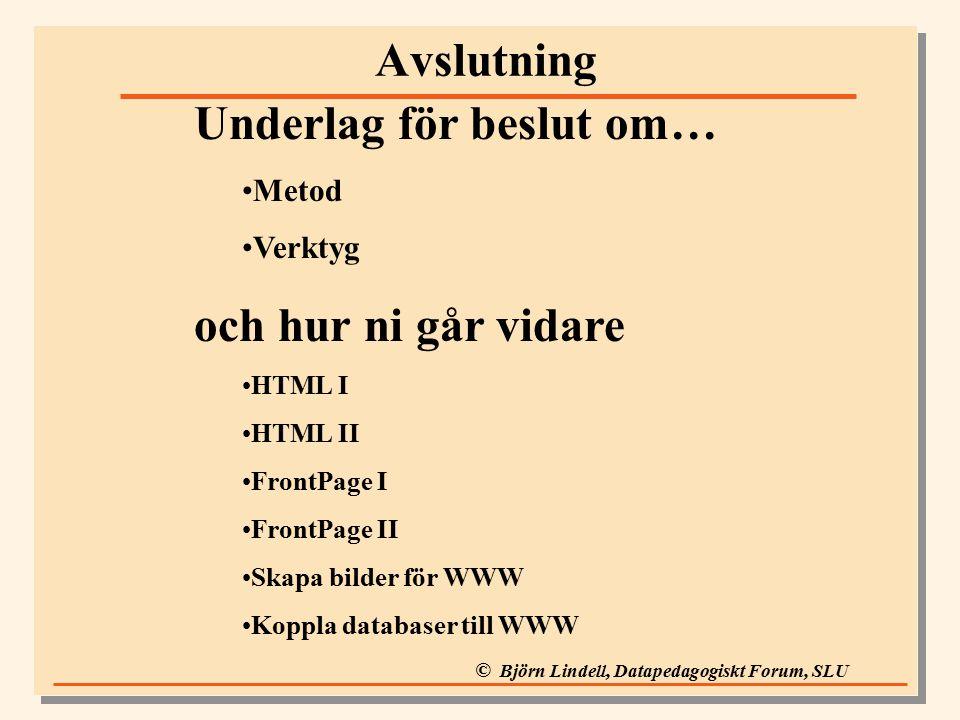 © Björn Lindell, Datapedagogiskt Forum, SLU Avslutning Underlag för beslut om… Metod Verktyg och hur ni går vidare HTML I HTML II FrontPage I FrontPage II Skapa bilder för WWW Koppla databaser till WWW