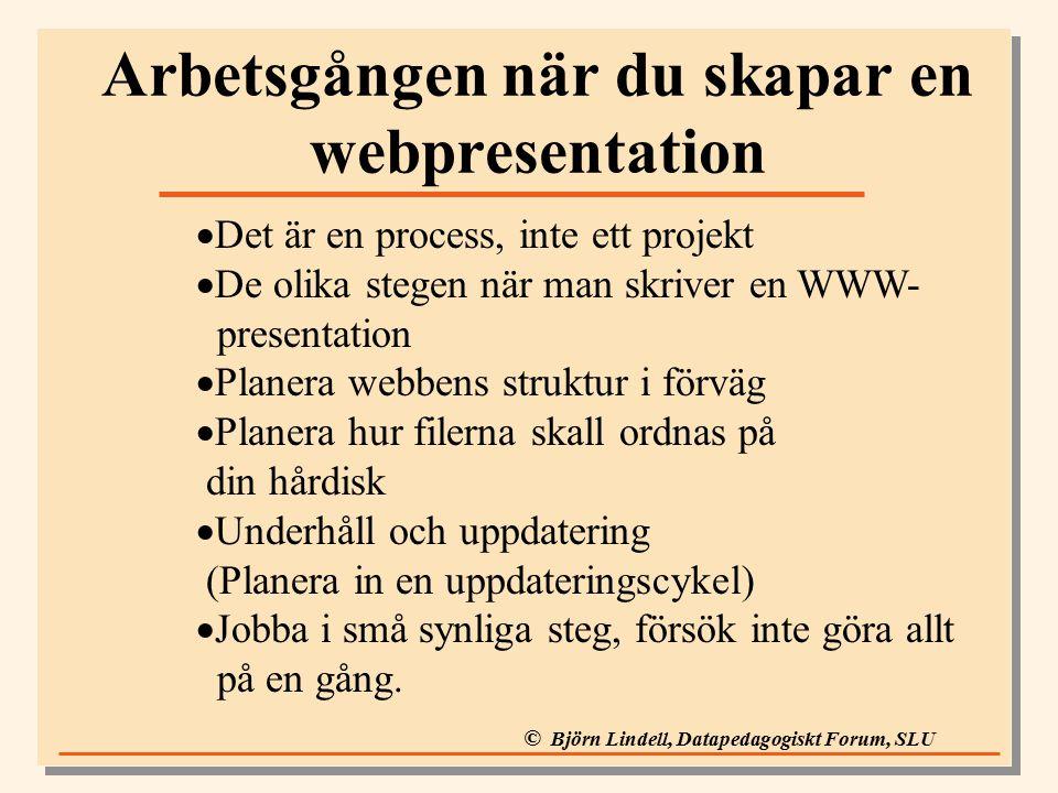 © Björn Lindell, Datapedagogiskt Forum, SLU Arbetsgången när du skapar en webpresentation  Det är en process, inte ett projekt  De olika stegen när man skriver en WWW- presentation  Planera webbens struktur i förväg  Planera hur filerna skall ordnas på din hårdisk  Underhåll och uppdatering (Planera in en uppdateringscykel)  Jobba i små synliga steg, försök inte göra allt på en gång.