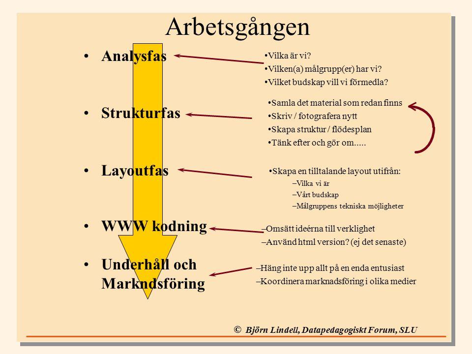 © Björn Lindell, Datapedagogiskt Forum, SLU Arbetsgången Analysfas Strukturfas Layoutfas WWW kodning Underhåll och Markndsföring –Häng inte upp allt på en enda entusiast –Koordinera marknadsföring i olika medier Vilka är vi.