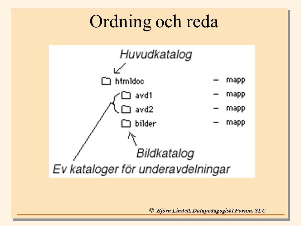 © Björn Lindell, Datapedagogiskt Forum, SLU Ordning och reda