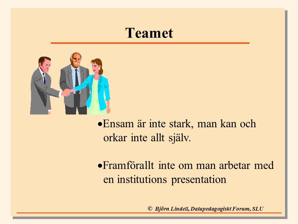 © Björn Lindell, Datapedagogiskt Forum, SLU Teamet  Ensam är inte stark, man kan och orkar inte allt själv.