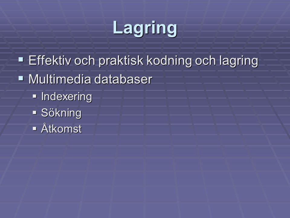 Lagring  Effektiv och praktisk kodning och lagring  Multimedia databaser  Indexering  Sökning  Åtkomst