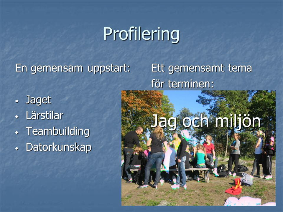 Profilering Ett gemensamt tema för terminen: Jag och miljön En gemensam uppstart: Jaget Jaget Lärstilar Lärstilar Teambuilding Teambuilding Datorkunsk