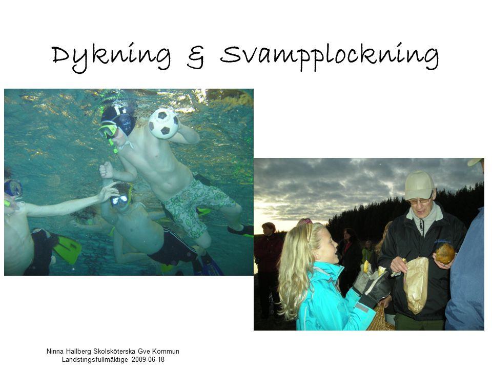 Dykning & Svampplockning Ninna Hallberg Skolsköterska Gve Kommun Landstingsfullmäktige 2009-06-18