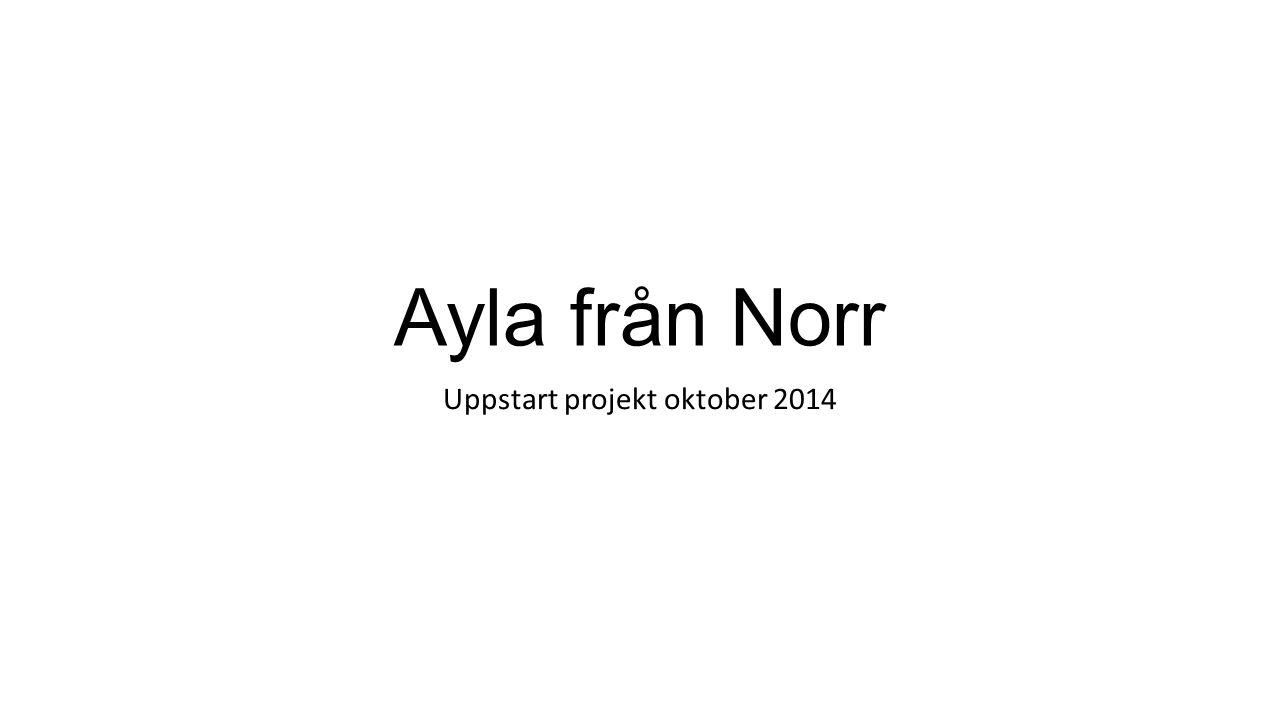 Ayla från Norr Uppstart projekt oktober 2014