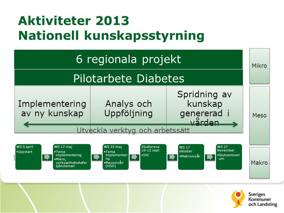 Aktiviteter 2013 Nationell kunskapsstyrning Utveckla verktyg och arbetssätt Pilotarbete Diabetes