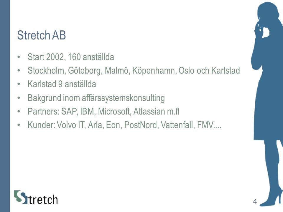 Stretch AB Start 2002, 160 anställda Stockholm, Göteborg, Malmö, Köpenhamn, Oslo och Karlstad Karlstad 9 anställda Bakgrund inom affärssystemskonsulti