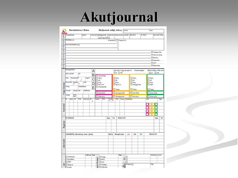 Akutjournal