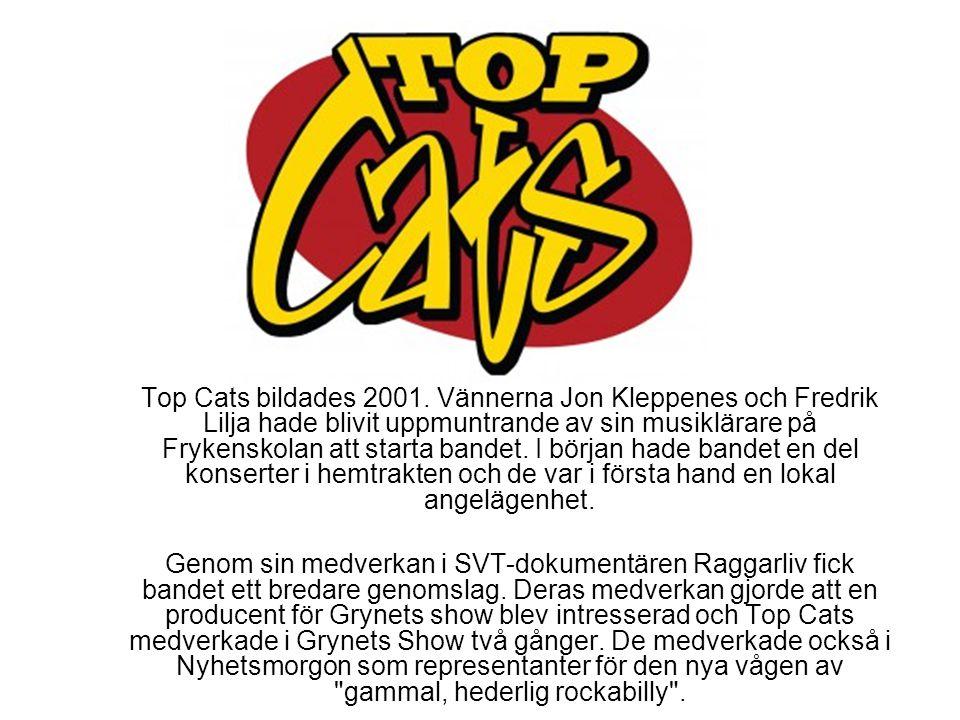 Top Cats bildades 2001. Vännerna Jon Kleppenes och Fredrik Lilja hade blivit uppmuntrande av sin musiklärare på Frykenskolan att starta bandet. I börj