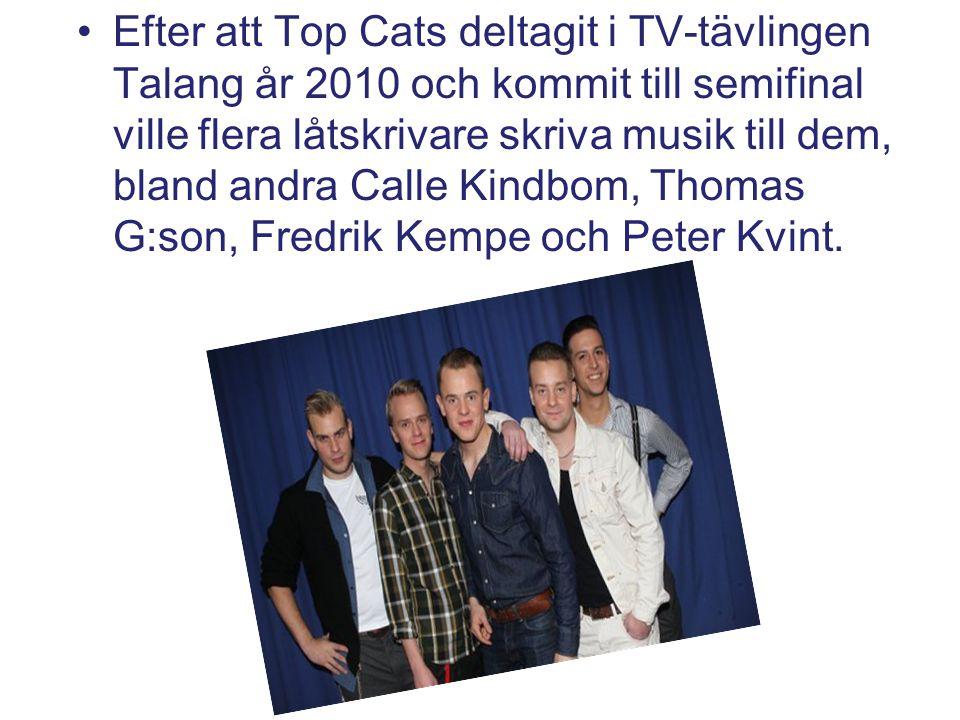 Efter att Top Cats deltagit i TV-tävlingen Talang år 2010 och kommit till semifinal ville flera låtskrivare skriva musik till dem, bland andra Calle K