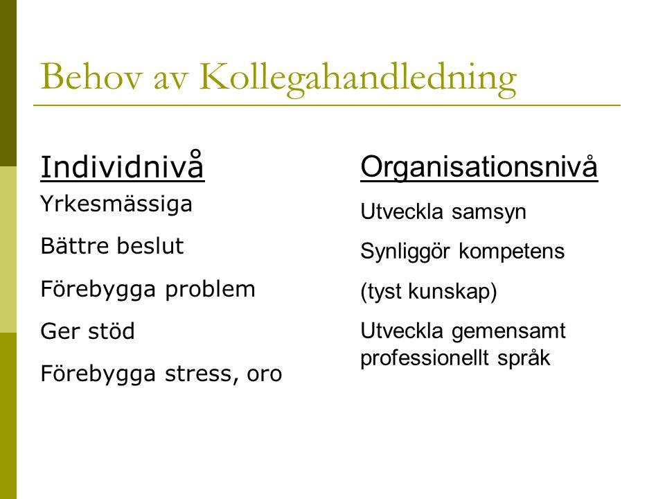 Individnivå Yrkesmässiga Bättre beslut Förebygga problem Ger stöd Förebygga stress, oro Organisationsnivå Utveckla samsyn Synliggör kompetens (tyst ku