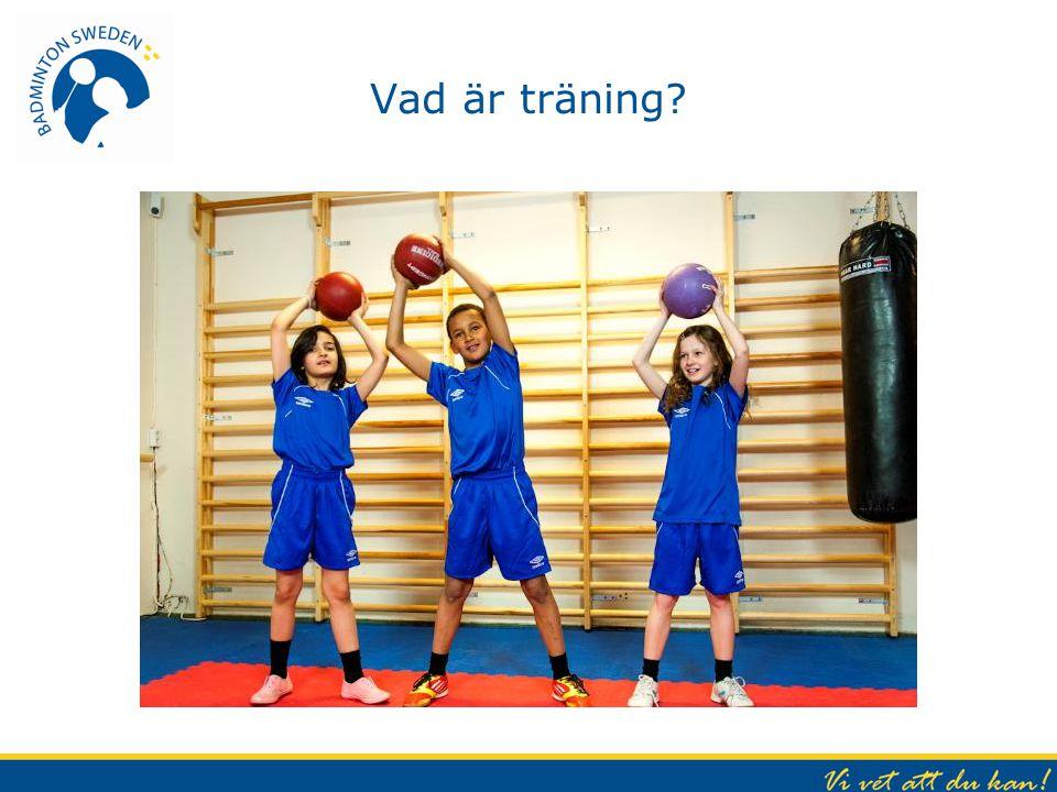 Vad är träning?