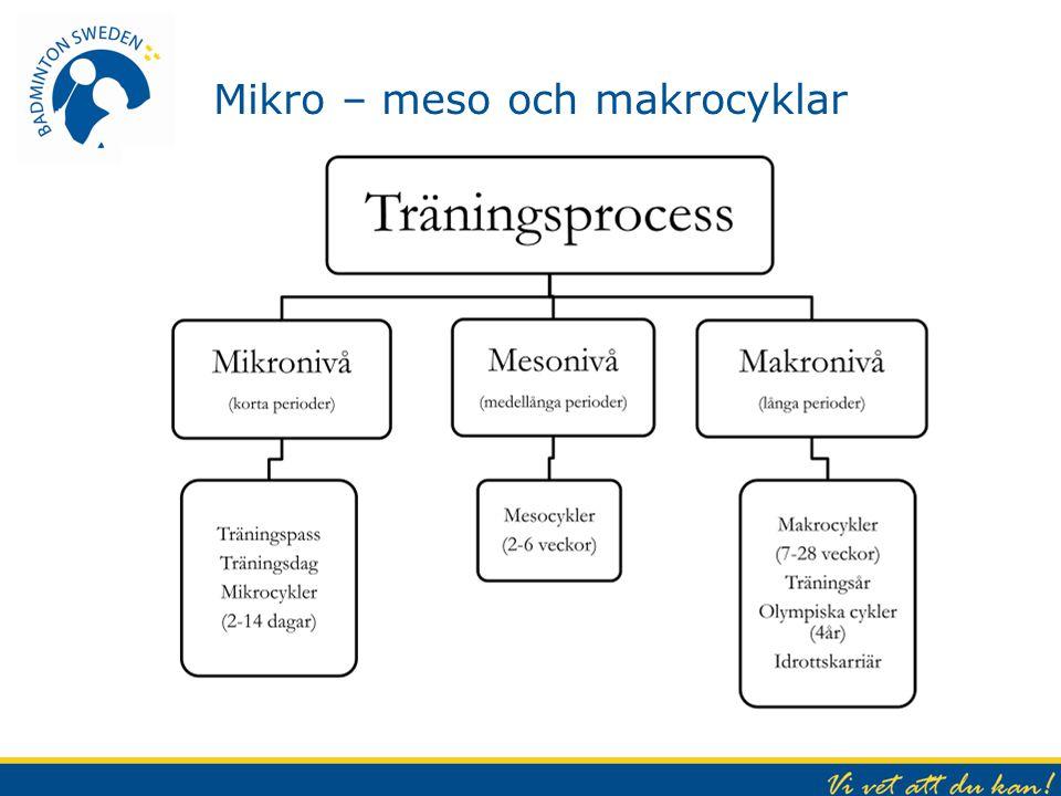 Mikro – meso och makrocyklar