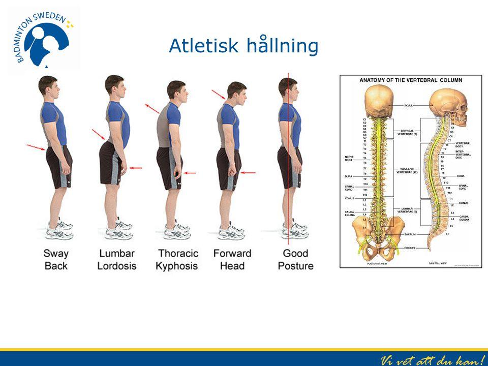 Atletisk hållning