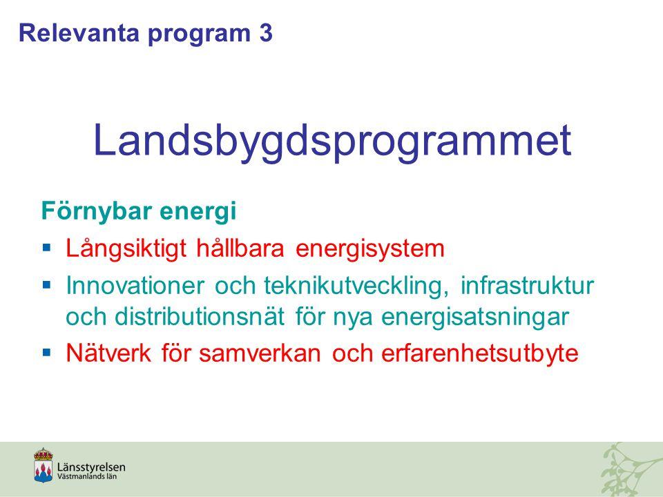 Landsbygdsprogrammet Förnybar energi  Långsiktigt hållbara energisystem  Innovationer och teknikutveckling, infrastruktur och distributionsnät för nya energisatsningar  Nätverk för samverkan och erfarenhetsutbyte Relevanta program 3