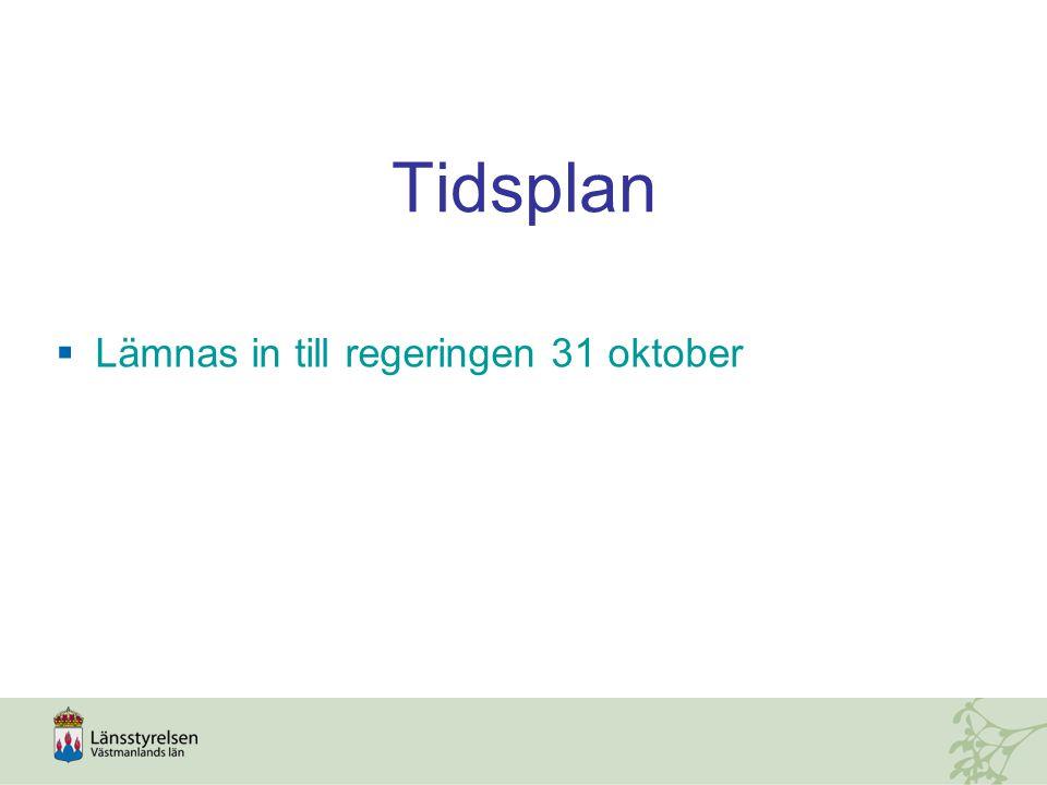 Tidsplan  Lämnas in till regeringen 31 oktober