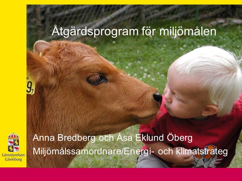 Åtgärdsprogram för miljömålen Anna Bredberg och Åsa Eklund Öberg Miljömålssamordnare/Energi- och klimatstrateg