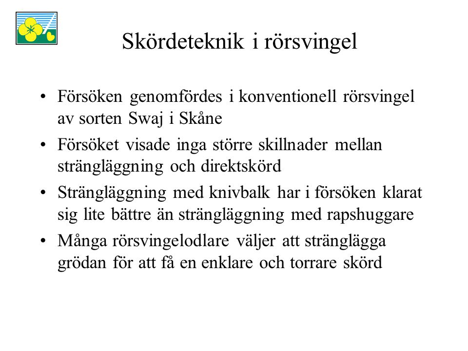 Skördeteknik i rörsvingel Försöken genomfördes i konventionell rörsvingel av sorten Swaj i Skåne Försöket visade inga större skillnader mellan strängl