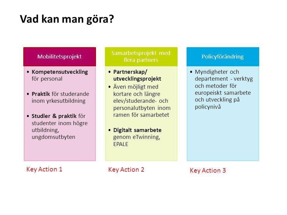 Sv Mobilitetsprojekt Kompetensutveckling för personal Praktik för studerande inom yrkesutbildning Studier & praktik för studenter inom högre utbildning, ungdomsutbyten Samarbetsprojekt med flera partners Partnerskap/ utvecklingsprojekt Även möjligt med kortare och längre elev/studerande- och personalutbyten inom ramen för samarbetet Digitalt samarbete genom eTwinning, EPALE Policyförändring Myndigheter och departement - verktyg och metoder för europeiskt samarbete och utveckling på policynivå Vad kan man göra.