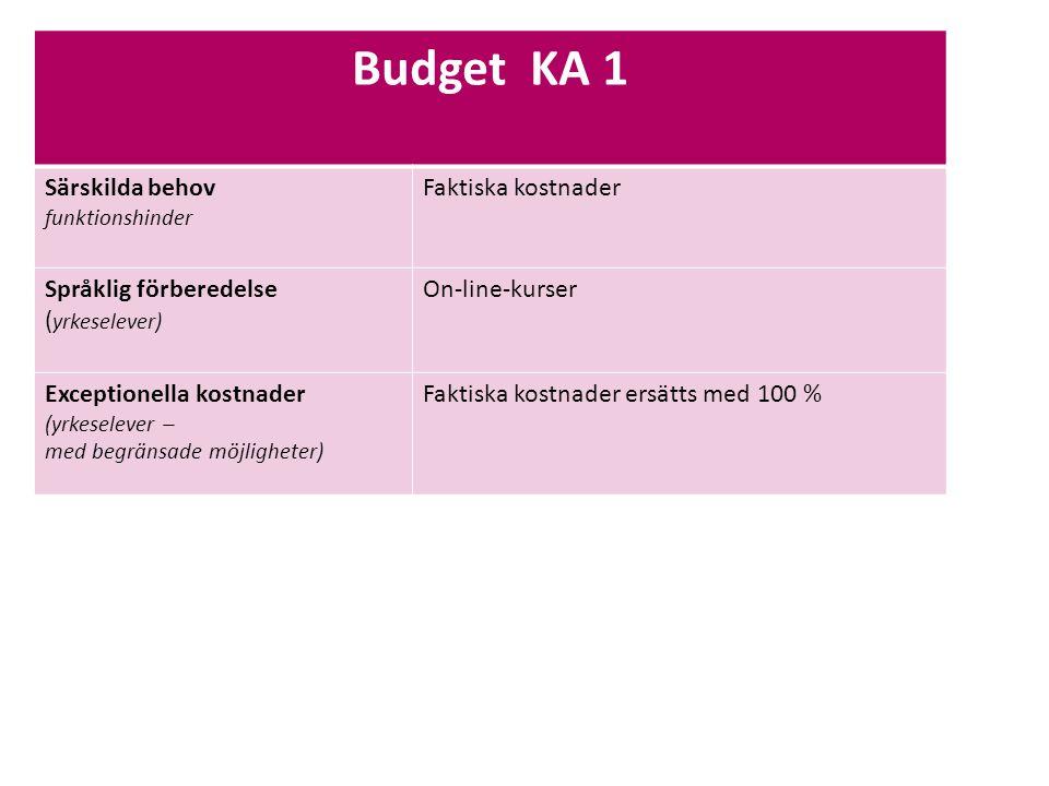 Sv Budget KA 1 Särskilda behov funktionshinder Faktiska kostnader Språklig förberedelse ( yrkeselever) On-line-kurser Exceptionella kostnader (yrkeselever – med begränsade möjligheter) Faktiska kostnader ersätts med 100 %