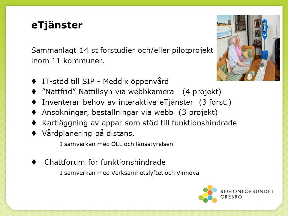 """eTjänster Sammanlagt 14 st förstudier och/eller pilotprojekt inom 11 kommuner.  IT-stöd till SIP - Meddix öppenvård  """"Nattfrid"""" Nattillsyn via webbk"""