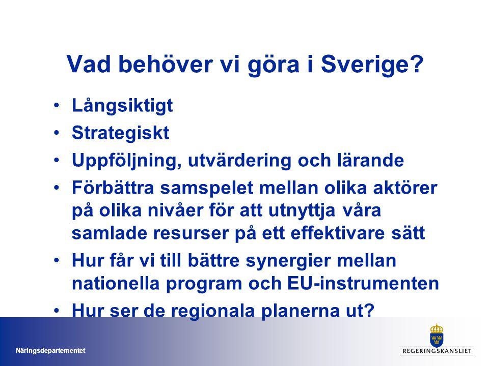 Näringsdepartementet Vad behöver vi göra i Sverige? Långsiktigt Strategiskt Uppföljning, utvärdering och lärande Förbättra samspelet mellan olika aktö