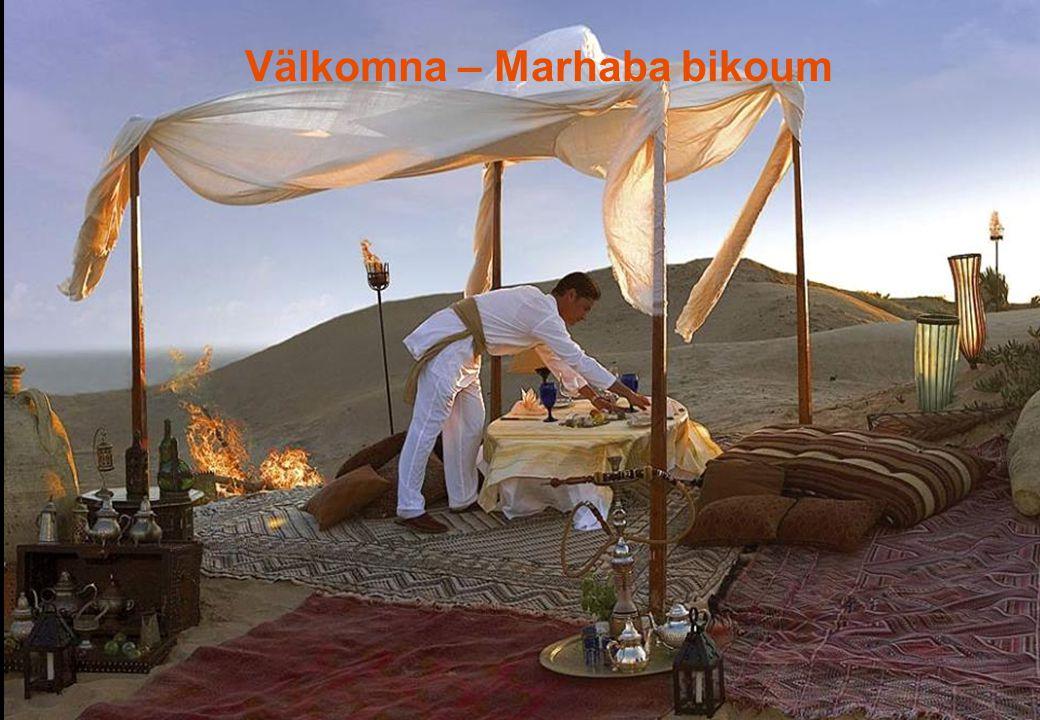 Nabil Al Fakir