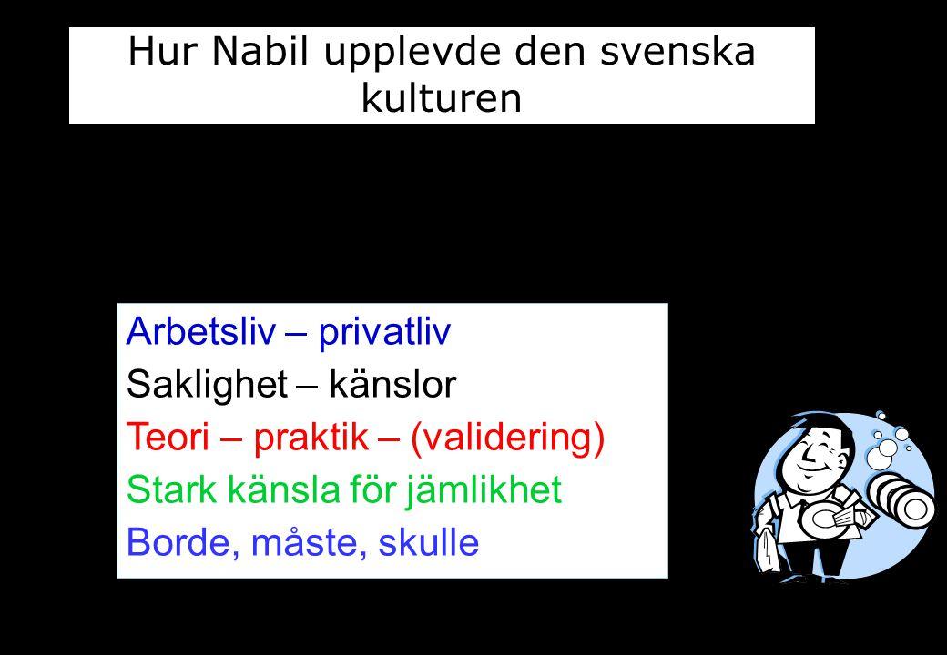 Arbetsliv – privatliv Saklighet – känslor Teori – praktik – (validering) Stark känsla för jämlikhet Borde, måste, skulle Hur Nabil upplevde den svensk