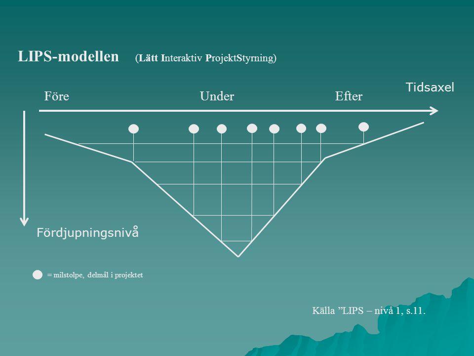 Före Under Efter = milstolpe, delmål i projektet Källa LIPS – nivå 1, s.11.