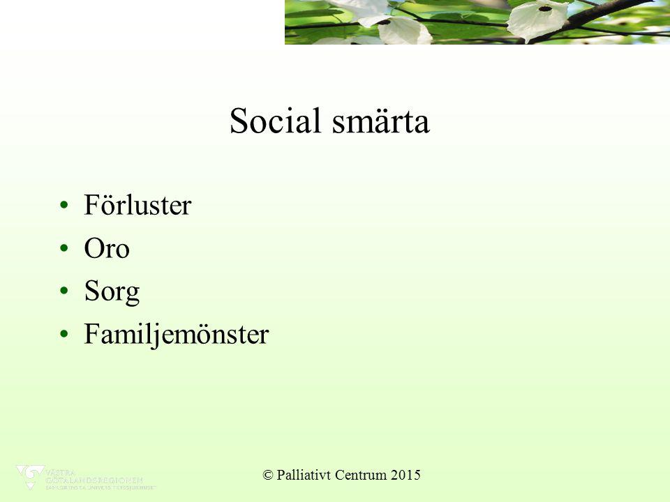 Social smärta Förluster Oro Sorg Familjemönster © Palliativt Centrum 2015