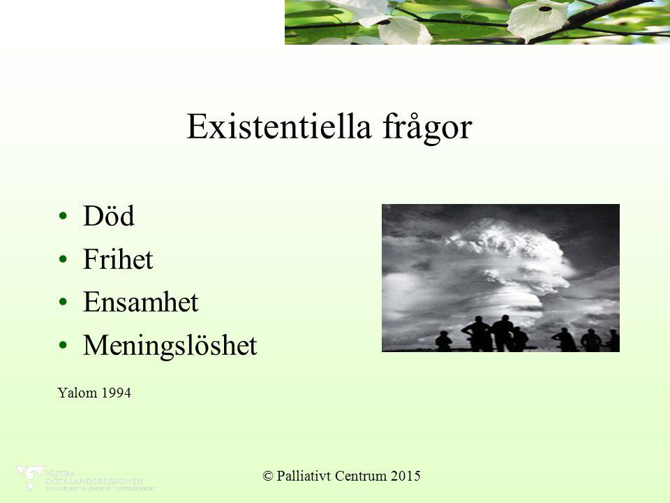 Existentiella frågor Död Frihet Ensamhet Meningslöshet Yalom 1994 © Palliativt Centrum 2015