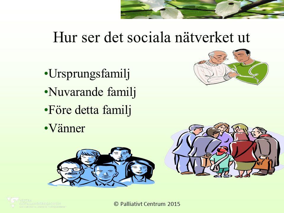 Hur ser det sociala nätverket ut Ursprungsfamilj Nuvarande familj Före detta familj Vänner © Palliativt Centrum 2015