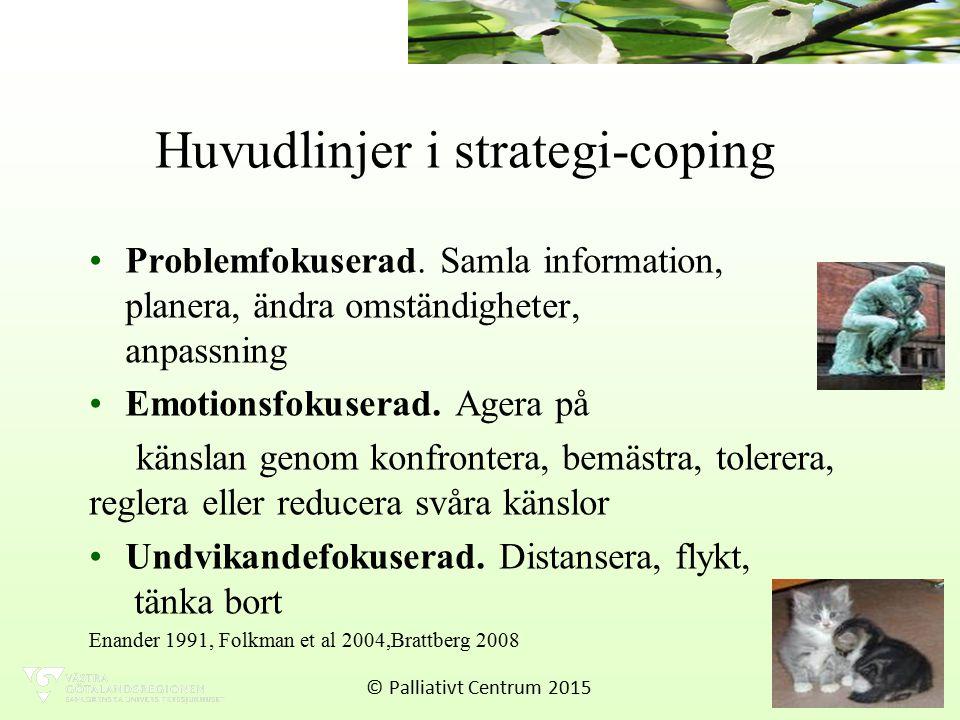 Huvudlinjer i strategi-coping Problemfokuserad.